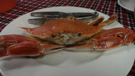 Getting to choose your crab was a slightly strange experience but super fresh and delicious!