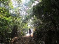 Trekking to the monastry