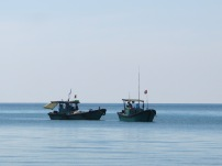 Fishing boats out to sea