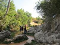 The Fairy Springs